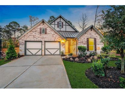 210 Mulberry Woods Court Willis, TX MLS# 49192824