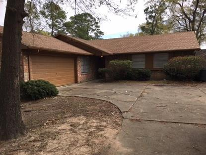 227 Black Rock Road Houston, TX MLS# 49399840