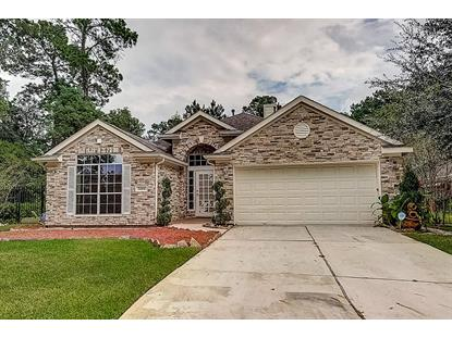 24501 Sable Creek , Porter, TX