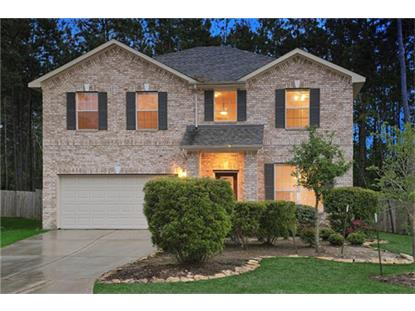 2 Ebony Oaks Place, The Woodlands, TX