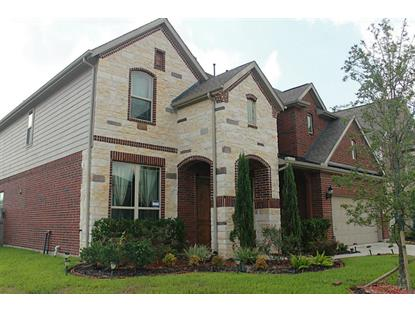 26803 Grey Peregrine Drive Katy, TX MLS# 53055184