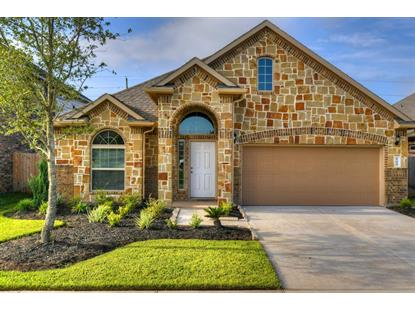 17019 Audrey Arbor Way Richmond, TX MLS# 53093199