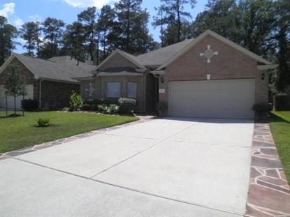 2607 Fern Lacy Drive, Spring, TX