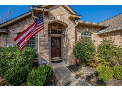 14519 Southern Magnolia Circle Circle Houston, TX MLS# 54862311