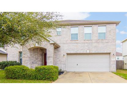 18122 Tawnas Way Lane, Cypress, TX