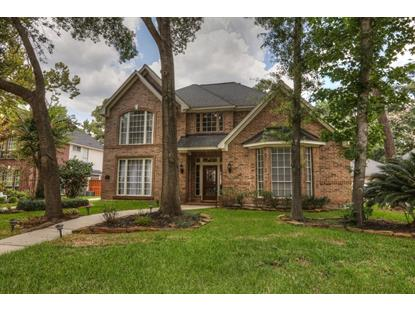 26 Nightfall Place, The Woodlands, TX