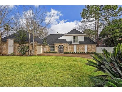 319 Big Hollow Lane Houston, TX MLS# 59067401