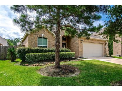 13806 McKinney Creek , Houston, TX