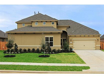 25314 Hollowgate Park Lane, Tomball, TX