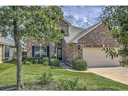38 Black Swan , The Woodlands, TX
