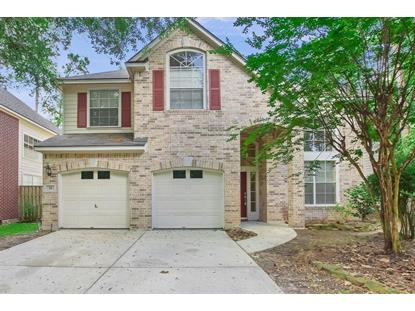26 Wildflower Trace Place, The Woodlands, TX