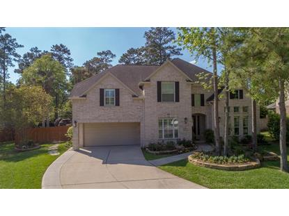 7 Birchwood Park Place, The Woodlands, TX