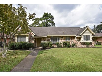 1142 Curtin Street Houston, TX MLS# 62980083