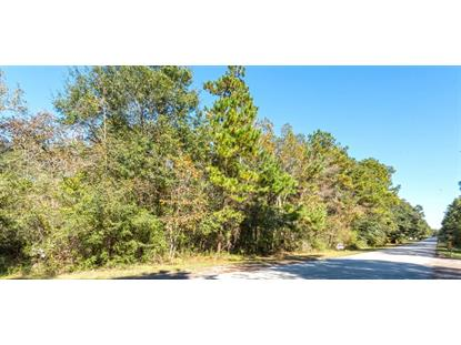 00000 Ascot Farms Road  Magnolia, TX MLS# 63865393
