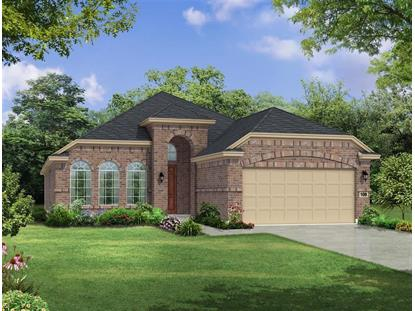 114 Mistflower Path  Montgomery, TX MLS# 64068948