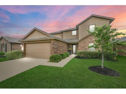 28822 Innes Park Place Katy, TX MLS# 64434269