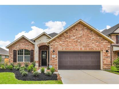 169 Bloomhill  The Woodlands, TX MLS# 65159744