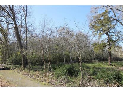 0000 County Road 194  Alvin, TX MLS# 65380117