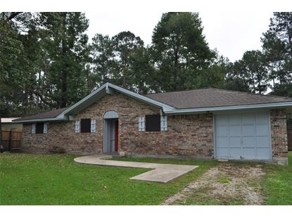132 Woodland Circle Kountze, TX MLS# 66572899