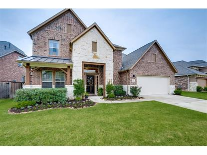 6131 Driscoll Park Drive Richmond, TX MLS# 66653450