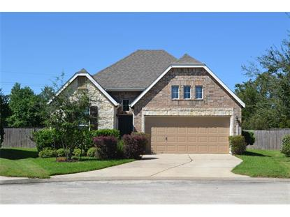 23731 Plantation Pines Lane, Tomball, TX