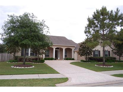 10118 WINDING GLEN Drive Katy, TX MLS# 69724789