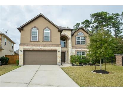 14331 Monarch Springs Lane Humble, TX MLS# 71539988