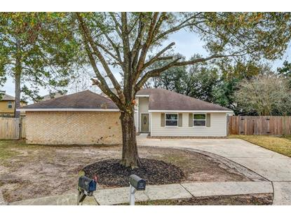 9816 Ibis Lane Conroe, TX MLS# 72943288