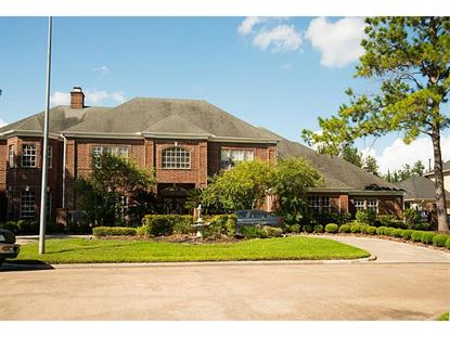 20506 S Autumn Shore Drive Katy, TX MLS# 73984295