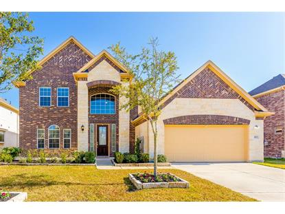 807 Oak River Lane Rosenberg, TX MLS# 74226823