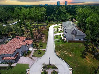 8 Honey Daffodil Place The Woodlands, TX MLS# 7836447