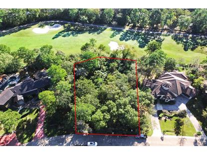 2507 Wild Wind Place The Woodlands, TX MLS# 79504548
