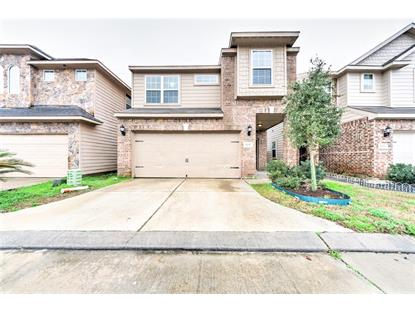 11017 Panther Court, Houston, TX