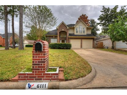6111 Sparks Valley Ct Court Houston, TX MLS# 79986121