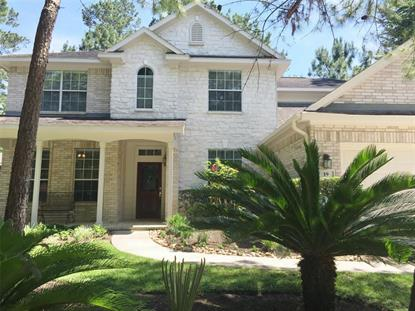 19 Valley Mead Place, The Woodlands, TX