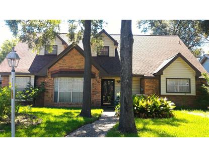 250 White Cedar Street, Houston, TX