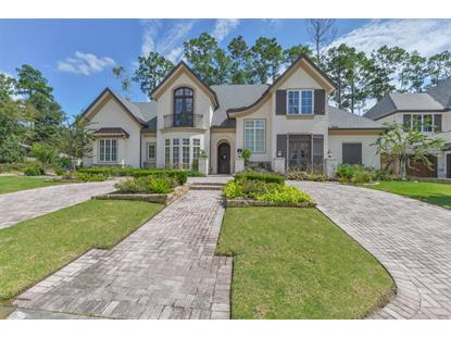 9 Honey Daffodil Place The Woodlands, TX MLS# 80366247