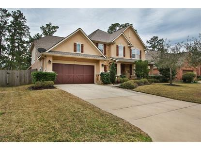 12027 Rampy Green Drive Tomball, TX MLS# 80538673