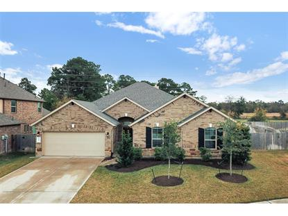 10015 Easterwood Trail Tomball, TX MLS# 81638259