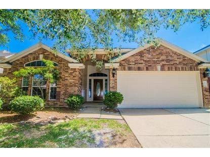 25222 Sterling Cloud Lane, Katy, TX