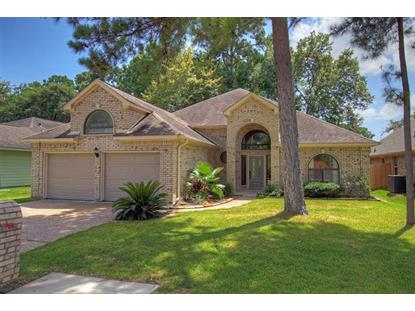 13707 Fountainview Drive, Montgomery, TX