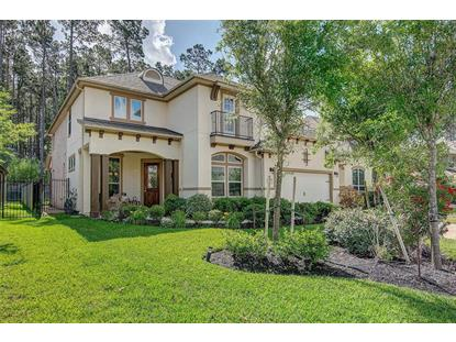 19 Inland Prairie Drive, The Woodlands, TX