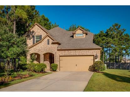 75 Whistling Swan , The Woodlands, TX