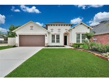 28958 Twisted Oak Drive, The Woodlands, TX