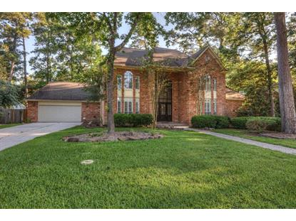 4815 Pine Garden Drive, Houston, TX