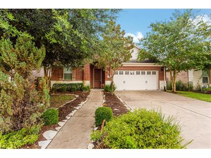 1323 Ralston Branch Way, Sugar Land, TX