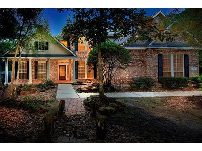 19 Ivory Moon Place The Woodlands, TX MLS# 88656639