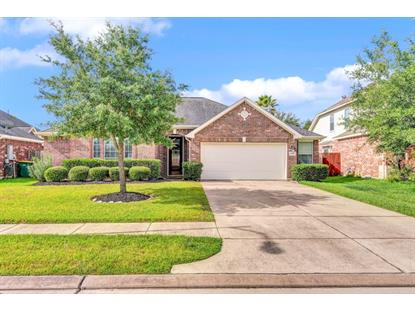 12914 Winter Springs Drive, Pearland, TX