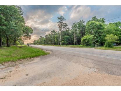 12595 Fm 2432 Road Willis, TX MLS# 96289086