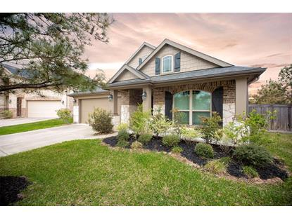 17402 Sundown Peak Court, Humble, TX